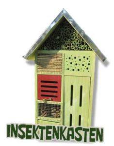 Insektenkasten