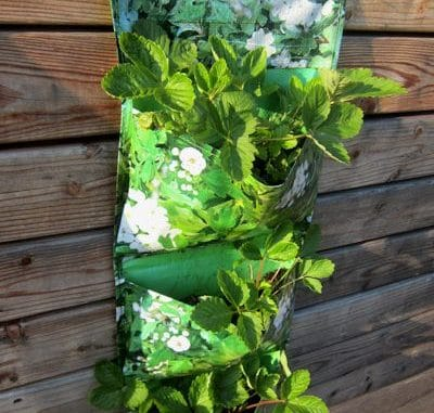 Pflanztaschen für Salate und Erdbeeren