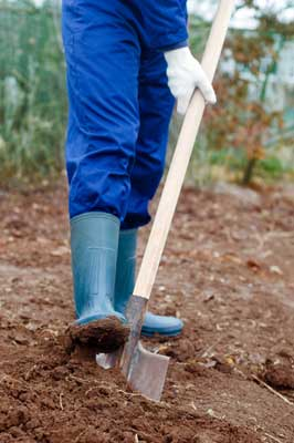 Bodenanalyse, Bodenprobe entnehmen