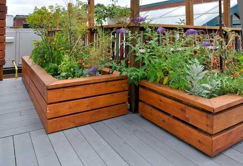 Wie Plane Ich Meinen Garten gardening mein garten auf dem balkon gartenzeitung com