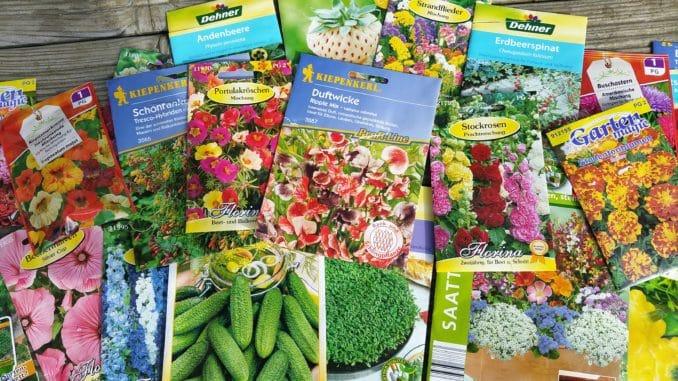 Saatgut immer beschriften und kühl und trocken aufbewahren