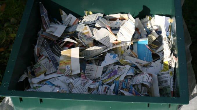 Wurmkiste gefüllt mit Zeitungspapier