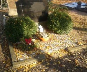 Grabstätten und Bodendecker