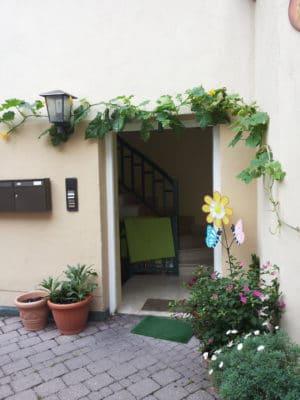 zucchinis als kletterpflanze f r die hauswand oder als essbarer sichtschutz. Black Bedroom Furniture Sets. Home Design Ideas
