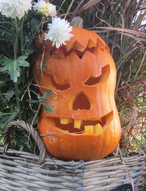 Kürbiskopf für Halloween