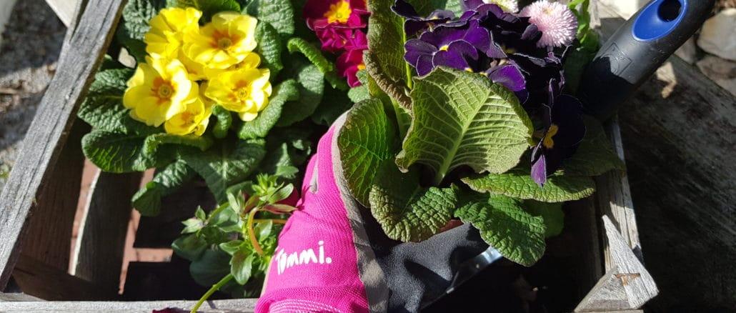 Frühling, Gartenarbeit, einpflanzen, Gartenhandschuh,