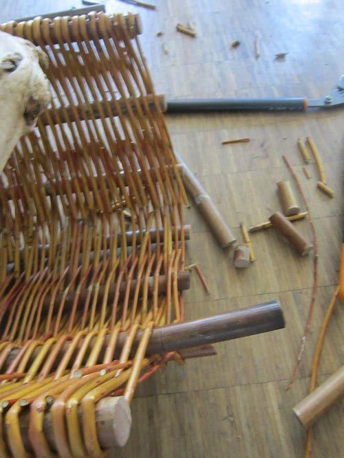 Stäbe des Weidenkorbes werden mit Astschere geschnitten
