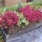 Grab bepflanzen und gestalten