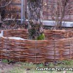 Hochbeet, Baum umflechten mit Weidenzaun