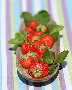 Erdbeeren - gesunder Genuss
