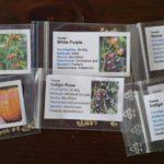 Tomatensamen, seltene Sorten von Gartenzeitung.com