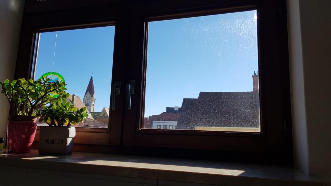 Ganz und zu Extrem Pflanzen unter dem Dachfenster - Gartenzeitung.com #BD_26