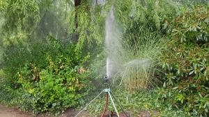 Bewässerung, Wasser, Trockenheit, giessen, Gartenzeitung.com