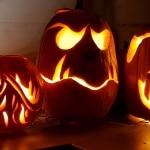 Kürbiskopf, Kürbisfratze, Halloween, Kürbis, Gartenzeitung.com