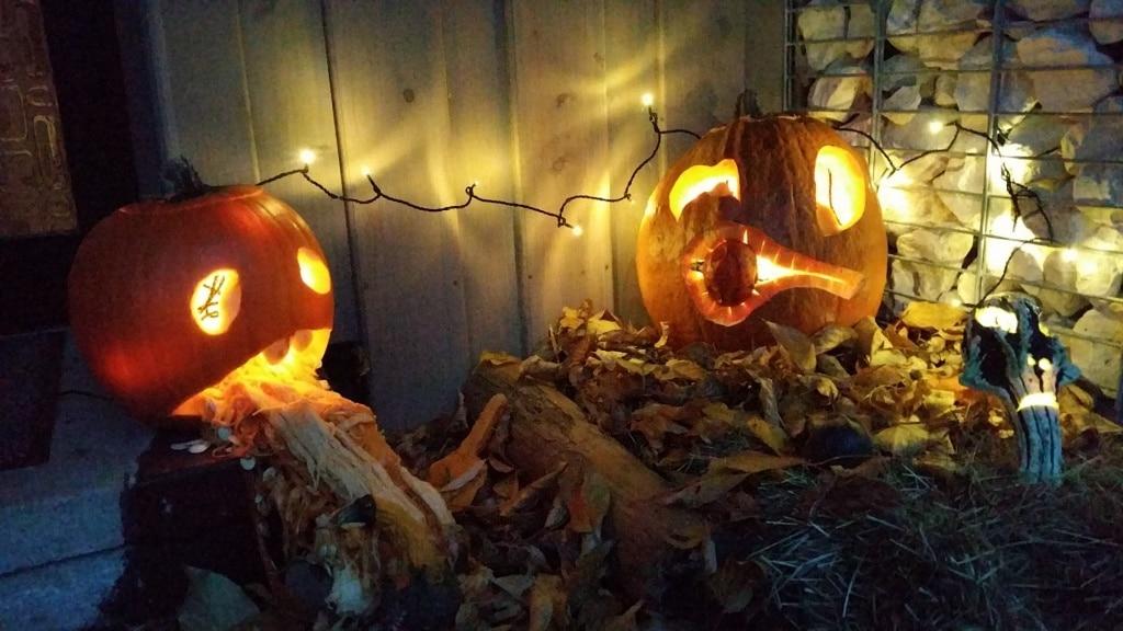 Kürbis, Halloween, schnitzen, Kürbisse, Herbst, Gartenzeitung.com