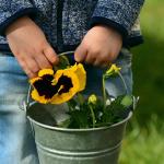 Kind im Garten, pixabay