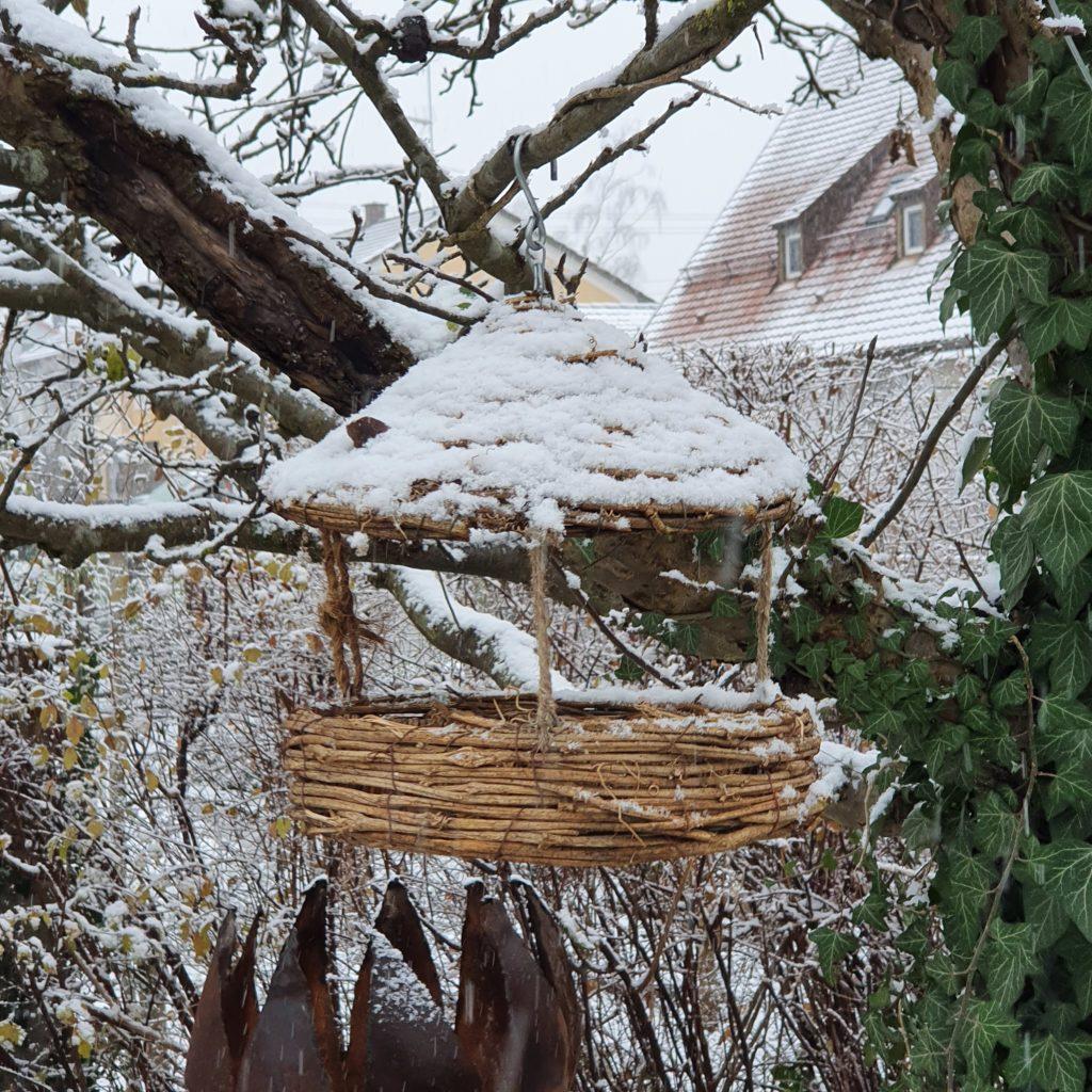 Vogelfutter, Winter, Schnee,
